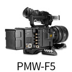 sony-F5-button2
