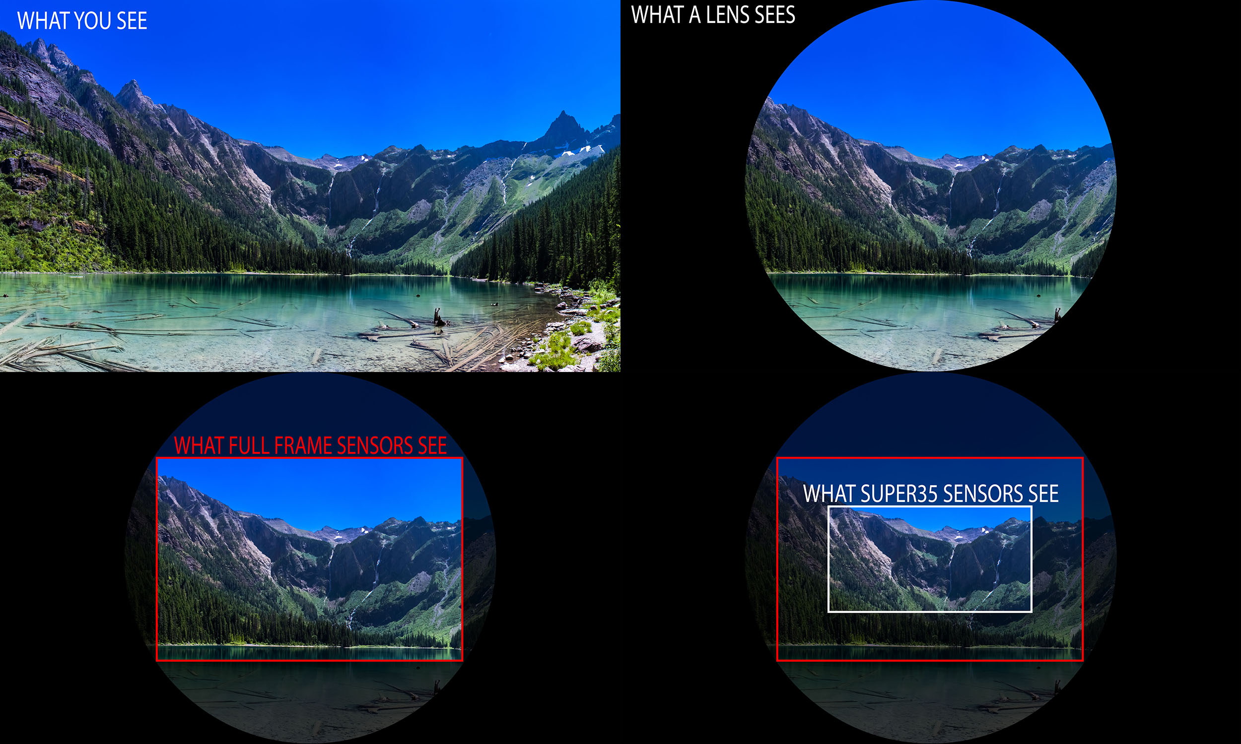 Demystifying Quot Crop Factor Quot Z Systems Inc